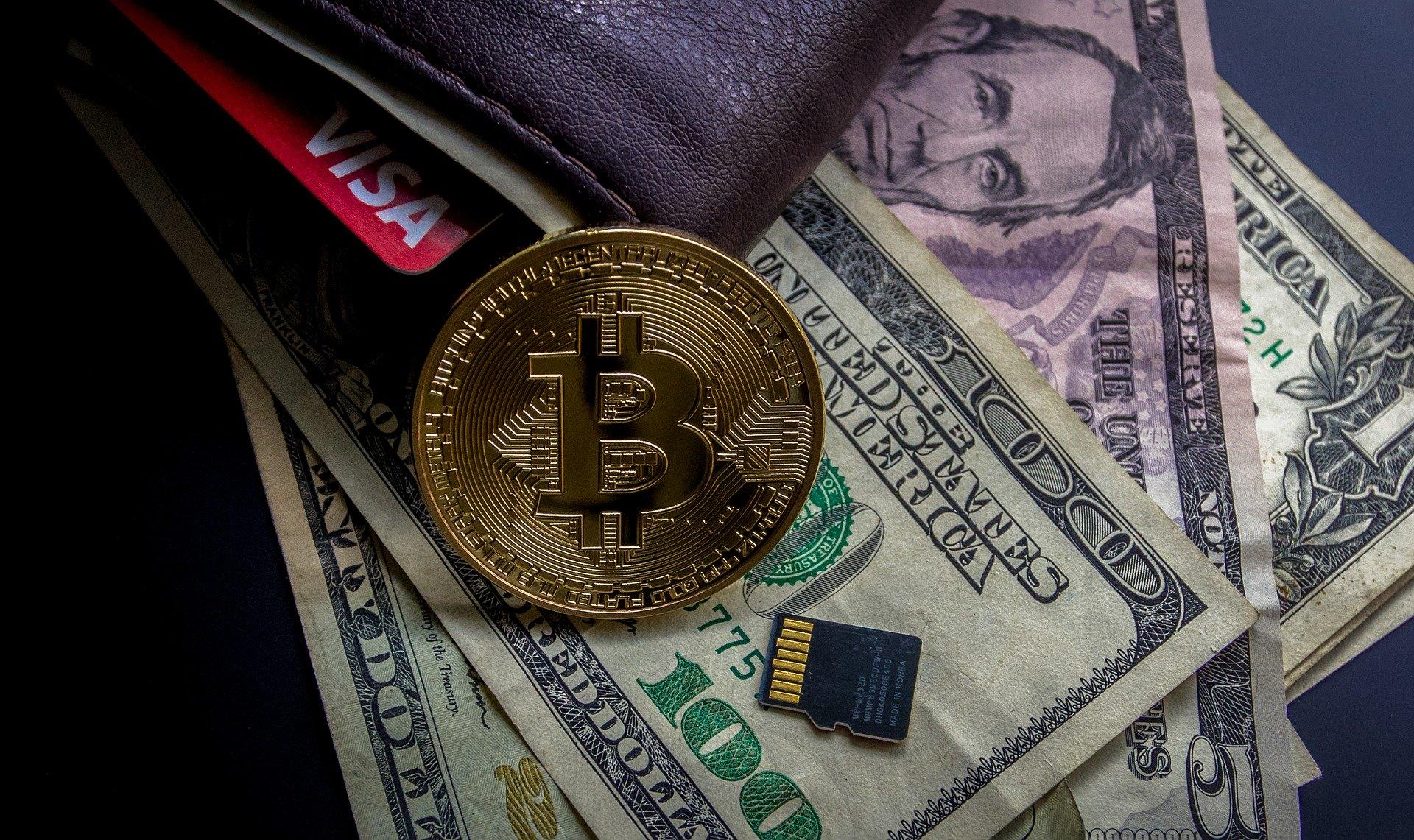 So enstand Bitcoin Rush das Unternehmen